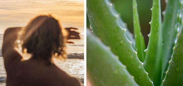 sunburn home remedies apple cider vinegar for sunburn pain relief