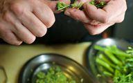Bimi kannst du ganz ähnlich wie Brokkoli zubereiten.