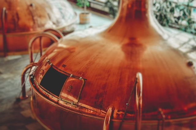 Craft Beer gibt es auch aus ökologischen Zutaten.