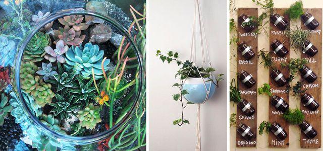Mehr Als Nur Deko 13 Kreative Ideen Für Mehr Grün In Der Wohnung