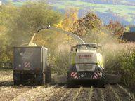 Schwere Maschinen belasten den Boden stark und können so zu einer Bodenverdichtung führen.