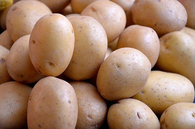 Mehliggkochende Kartoffeln sind die Hauptzutat für Kluski.