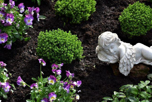 Wenn du ein Grab bepflanzt, solltest du auf heimische Pflanzensorten achten.