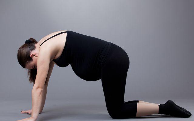 Die Katze-Kuh-Übung ist eine beliebte Yogaübung für Schwangere.
