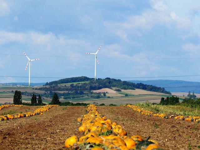 """Die Idee einer nachhaltigen Landwirtschaft wird zum Beispiel durch sogenannte """"Solawis"""" umgesetzt."""