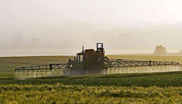 Getreide wird oft mit Pflanzenschutzmitteln behandelt. Besonders verbreitet ist Glyphosat.