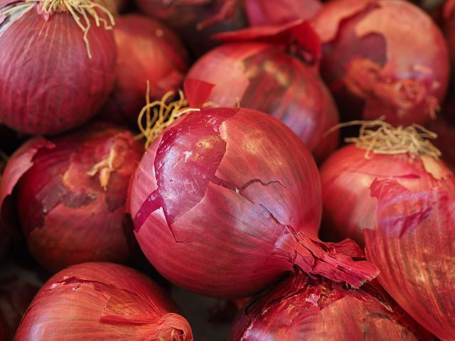 Rote Zwiebeln eignen sich gut für ein leckeres Chutney.
