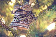 Weihnachtsbäume ohne Genehmigung selbst zu schlagen ist illegal.