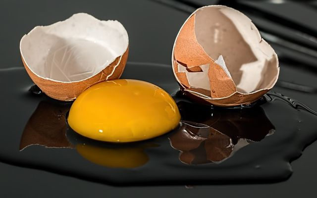 How to tell if eggs are still good yoke test