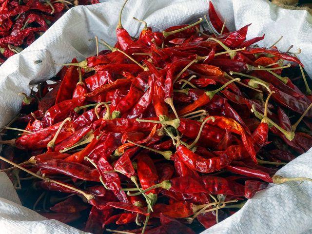 Chilis eignen sich besonders gut zum Trocknen.