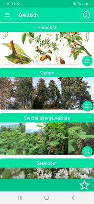 """Die App """"Bäume bestimmen - Baumbestimmung"""""""