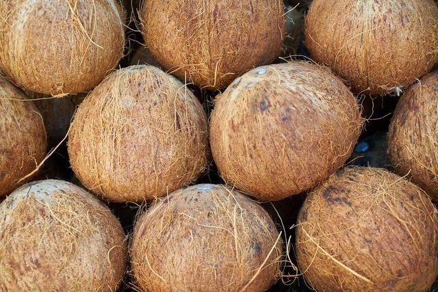 Kokoserde besteht aus getrockneten Kokos-Fasern.