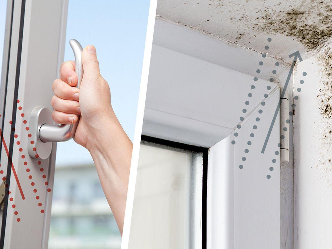 Richtig lüften 20 Tipps – Schimmel in der Wohnung vermeiden ...