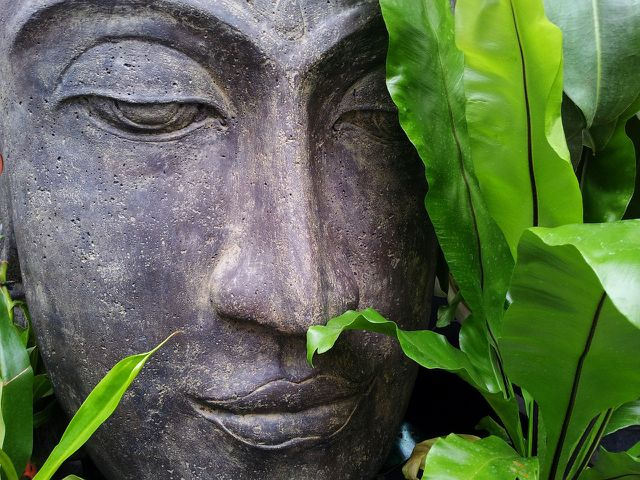 Meditieren hilft dir dabei, Empathie zu lernen.