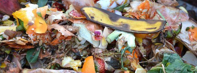 Weggeworfene Lebensmittel kannst du zu Kompost weiterverarbeiten.