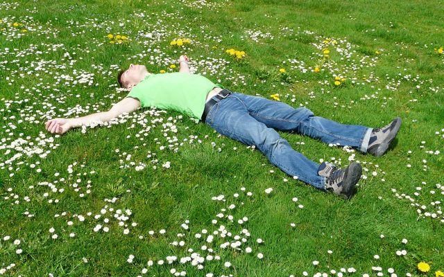 Mittagspause nachhaltig, Mann relaxt auf Wiese