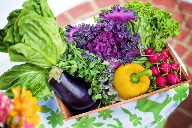 Eine geballte Ladung Gemüse schmeckt nicht nur Veganern.