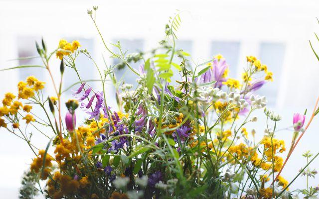 Blumenstrauß kaufen: Fairtrade-Blumen, Bio-Blumen oder regionale Blumen