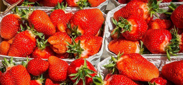 Erdbeeren Erdbeerzeit