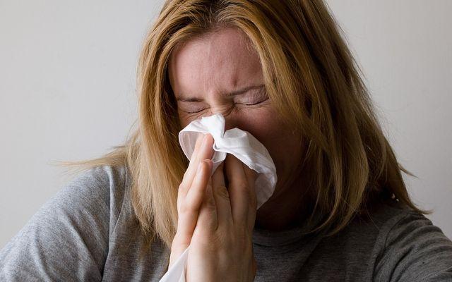Hagebuttentee hilft bei der Abwehr von Viren, die beispielsweise eine Erkältung hervorrufen können