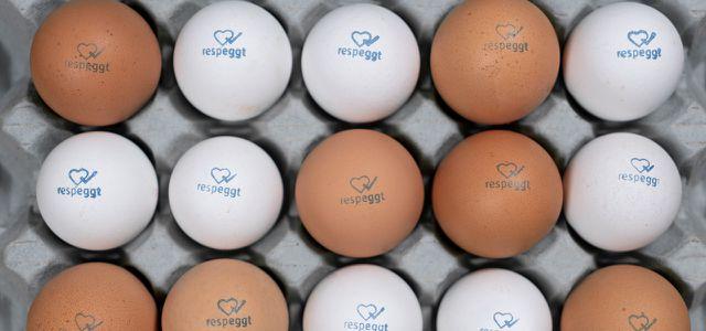 respeggt! Der Stempel zeigt, das sind Eier, für deren Produktion keine Küken getötet wurden