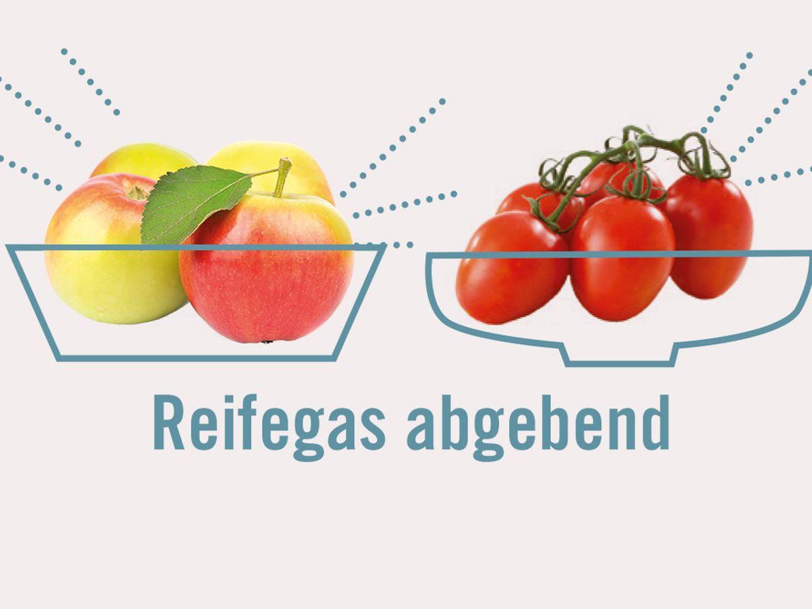 Obst und Gemüse gemeinsam lagern – oder getrennt   Utopia.de