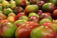Die Mango steckt voller Vitamine und ist deshalb eine gesunde Vitaminbombe.