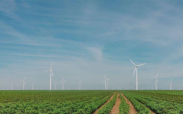 grünes Geld nachhaltige Geldanlage Finanzen