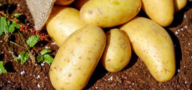 kartoffeln roh kalorien