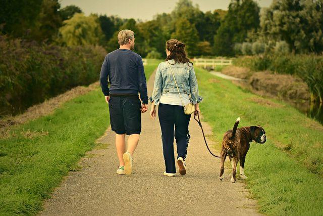 Langsame Spaziergänge aktivieren die Heilung.