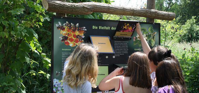 Umweltbildung am Löwenzahnpfad im Naturpark Barnim