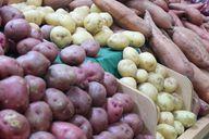 Kartoffeln gibt es häufig auch unverpackt zu kaufen.