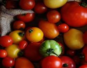 should tomatoes be refrigerated