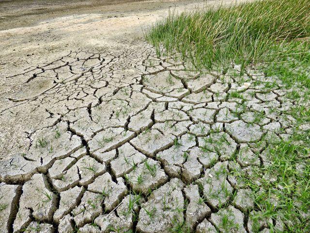 Extreme Dürre als Folge des Klimawandels
