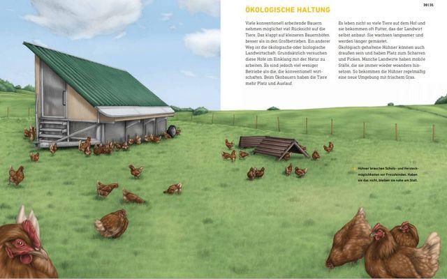 Kinderbuch, Shitstorm, Das wahre Leben der Bauernhoftiere