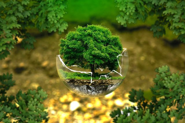 Umweltschutz zum Erhalt der Biodiversität
