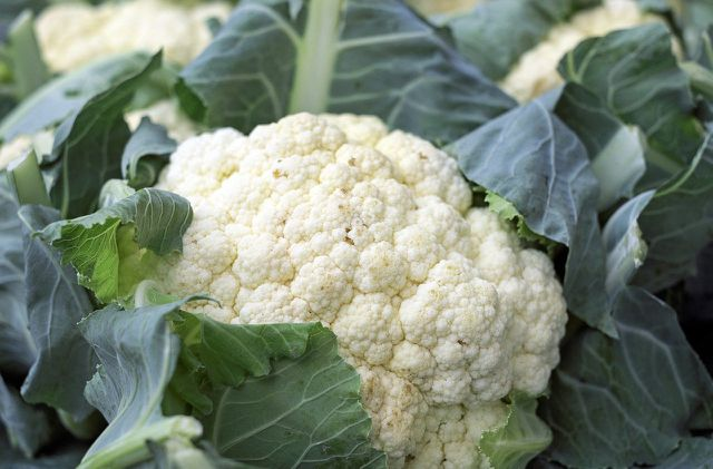 Für Blumenkohl-Risotto brauchst du keine Reiskörner.