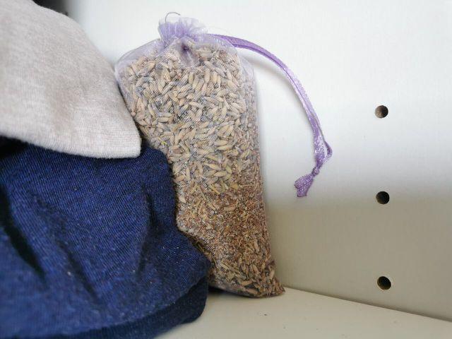 Lavendel hilft gegen Kleidermotten im Schrank.