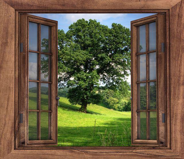 Mit etwas Silikon kannst du deine Fenster wieder abdichten.